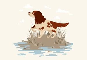 Hunting dog tutorial400