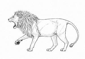 How to draw roaring lion preview