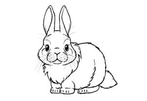 How to draw a bunny preview