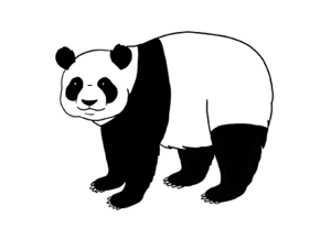 How to draw panda preview