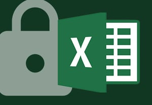 Protect excel icon