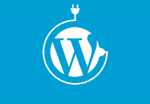 Essential wordpress plugins 400x277