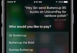 Siri options