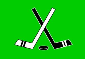 Hockey defense preview