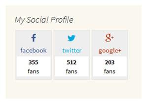 Building a social profile widget feature