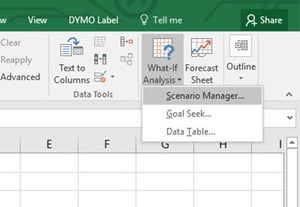 Excel scenerio manager