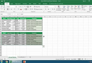 How to use format painter in excel quickly