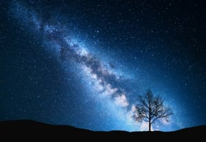 Milky way and tree on the field p75zpnu%20(1)%20(1)