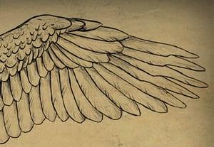 Wings final