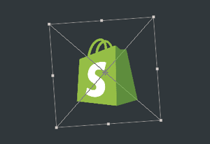 Shopify preview