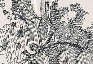 Sketch retina