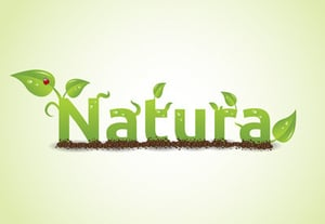 Nature vector preview