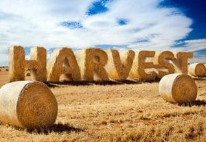 Harvestpreview