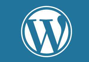 Remove powered by wordpress from website footer