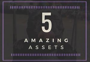 5 amazing assets pet