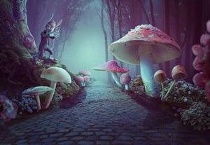 Wonderland thumbnail