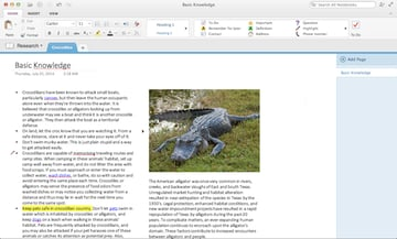 OneNote offers an infinite canvas to fit all keep all your ideas on the same page