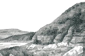 Final crosshatched landscape