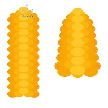 shape out the maize