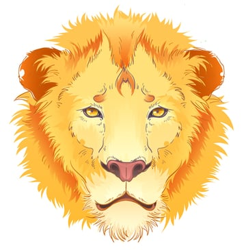 This is how our lion looks at this step
