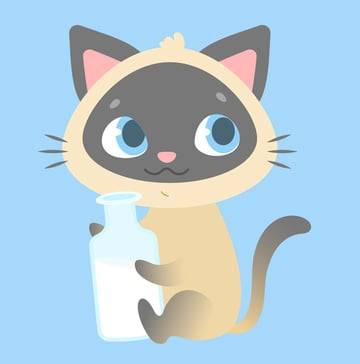 place the bottle in kittens paws
