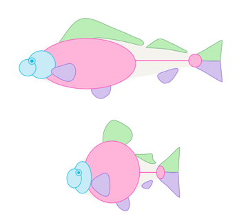 how to draw fish 2