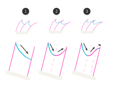 how to draw fish fins 2 1