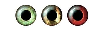 fish eyes draw