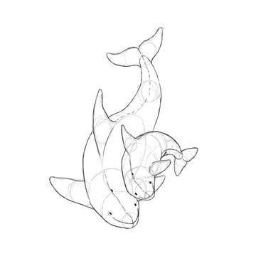 how to draw killer whale baby 3