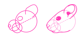 rodents how to draw chinchilla head