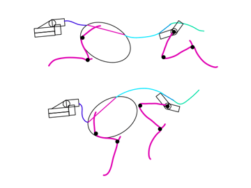 animal how to draw legs perspective 2