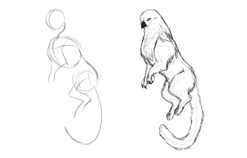 animation animal griffin sketch