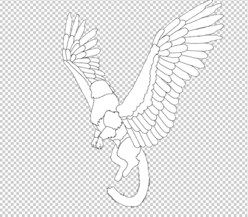 animation animal griffin flight flying wings draw photoshop body lineart 4