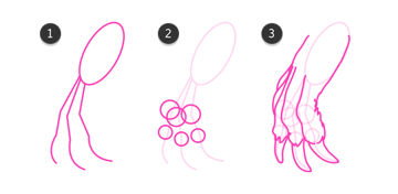 kangaroo how to draw feet paws hands 7