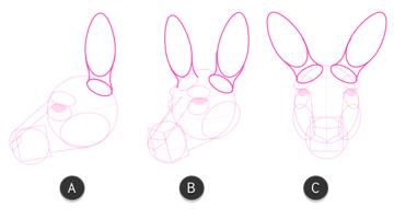 kangaroo how to draw head 8