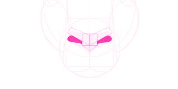 kangaroo how to draw nose mouth 5