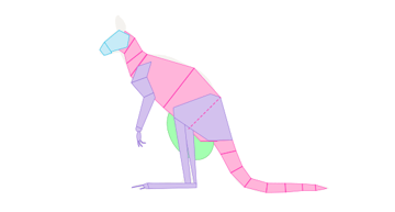 kangaroo pouch