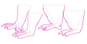 koala how to draw paws feet 5