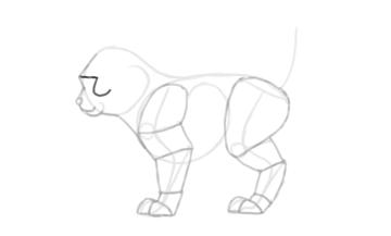 photoshop draw sketch kitten cat simple 14
