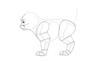 photoshop draw sketch kitten cat simple 15