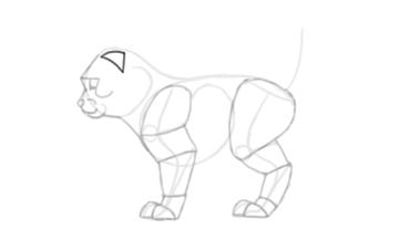 photoshop draw sketch kitten cat simple 16