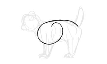 photoshop draw sketch kitten cat simple 3