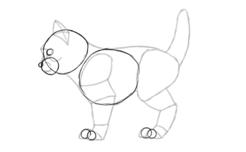 photoshop draw sketch kitten cat simple prepare for animation