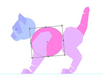 photoshop animation kitten body animal simple 20