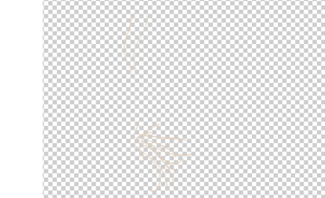 photoshop animation whiskers 2