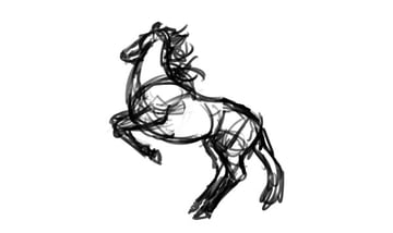 how to draw horse reference 2