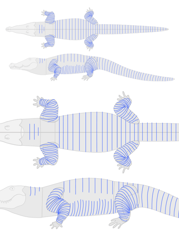 how to draw crocodile alligator scales pattern