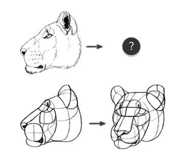 how to rotate head animal form