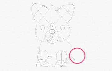 how to draw fox tail cartoon