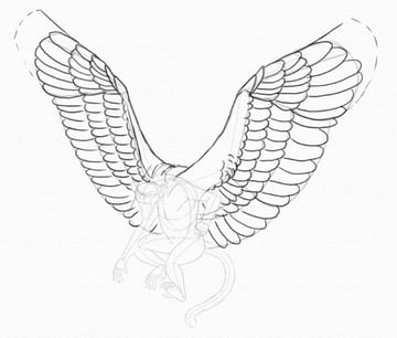 draw wings slotted primaries